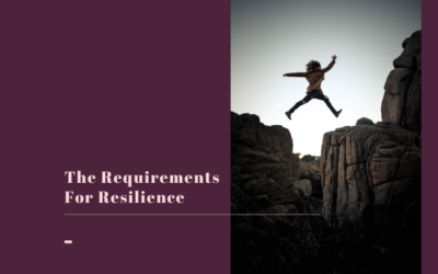 The 7 Essential Requirements for Resilience